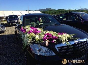 Uniflora Nunta Sibiu