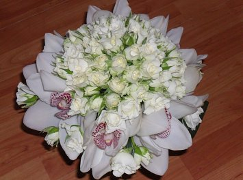 Floraria Sic Nunta Sibiu